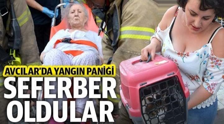 Avcılar'da yangın paniği: Ekipler seferber oldu